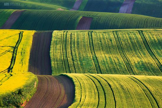 Kyjovská krajina