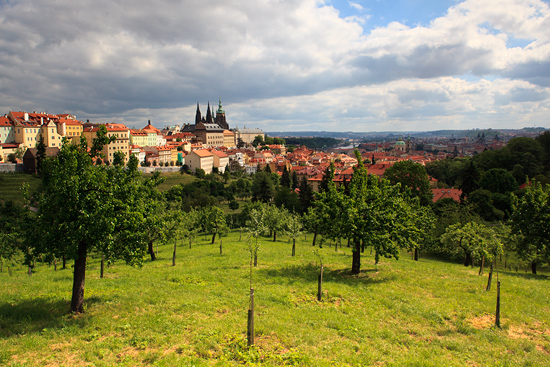 Výhled od Strahovského kláštera