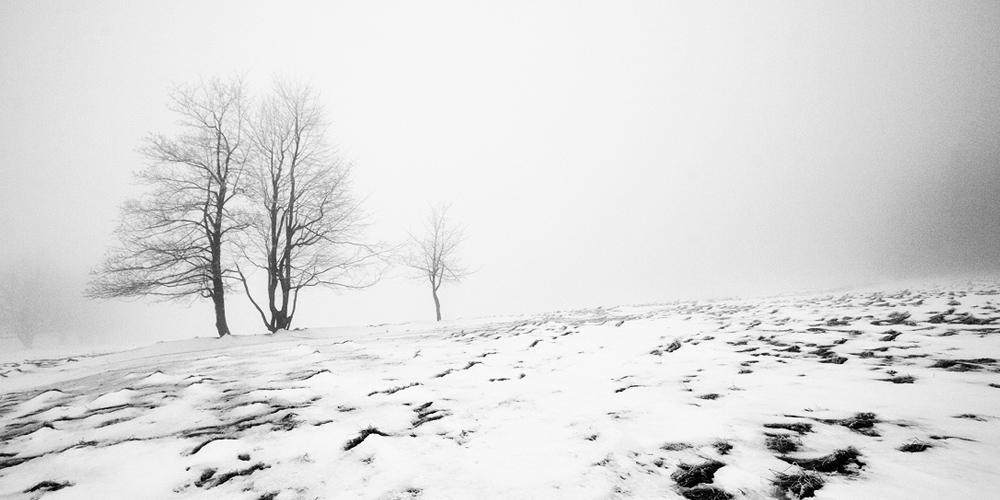 Zima v Českosaském Švýcarsku