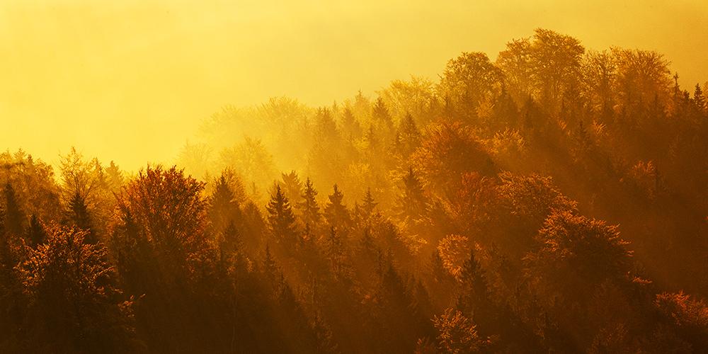 České Švýcarsko na podzim