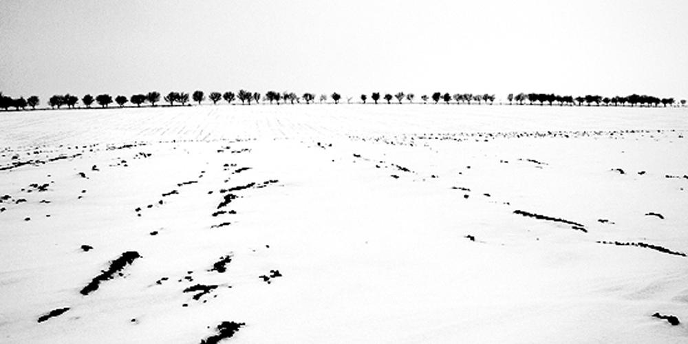 Extrémní zima v Českém Středohoří