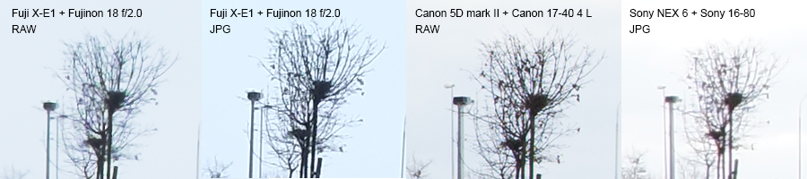 Fuji X-E1, Sony NEX6, Canon 5D