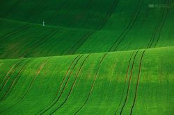 fotografie Krajina Jižní Moravy