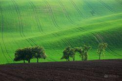 fotografie Jižní Morava