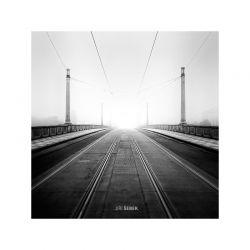 fotografie Mánesův most v mlze