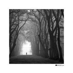 fotografie Park Hvězda