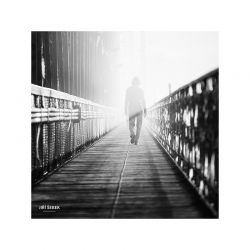 fotografie Duch na železničním mostě pod Vyšehradem
