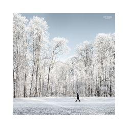 fotografie Obora Hvězda v zimě
