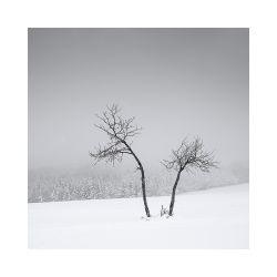 fotografie Zimní krajina Krušných hor
