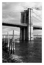 fotografie Brooklyn Bridge 3