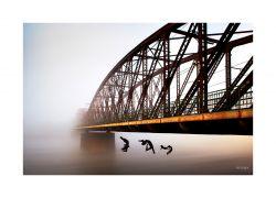 fotografie Sochy pod železničním mostem