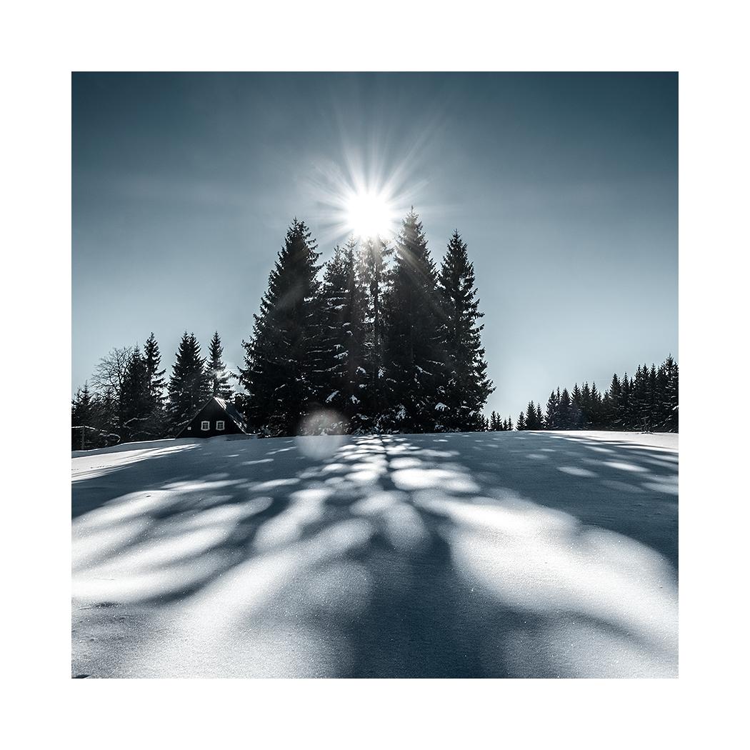 fotografie Stíny zimy
