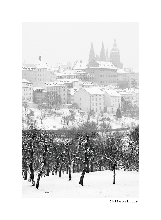 fotografie Petřínské sady