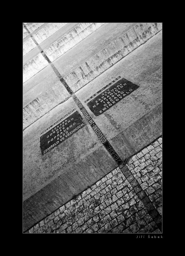 fotografie Linie